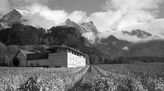 Naturnaher Weinbau sichert Lebensqualität, Fläsch, CH