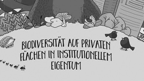 Dialog Immobilien & Biodiversität