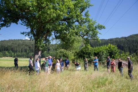 "Naturnahe Betriebsflächen – Workshop ""im Grünen"""